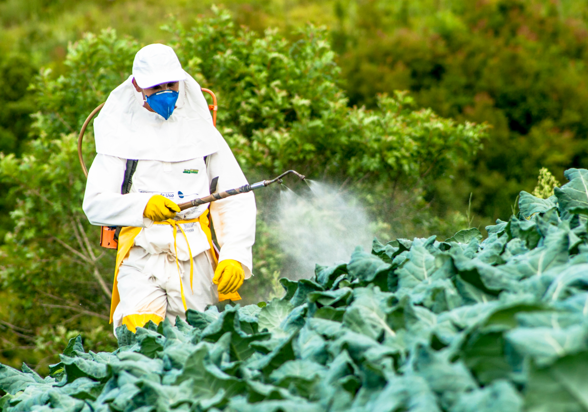 Fertilisers and pesticides are increasing the amount of pollutants in natural and agricultural land.