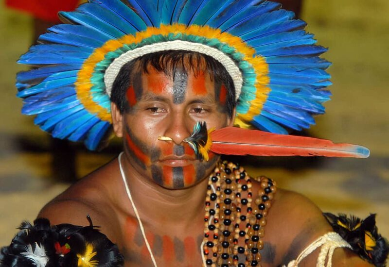 Indigenous people can lead the way in saving the Amazon's rainforests