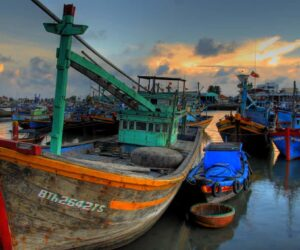 Vietnam needs to make its fishing practices more sustainable