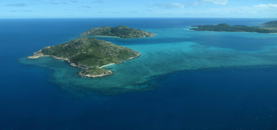 Almost 60 coral species at Australia's Lizard Island are 'missing'