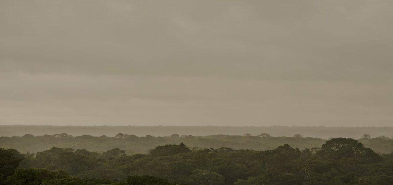 The Amazon is no longer a carbon sink. It's a 'carbon source'