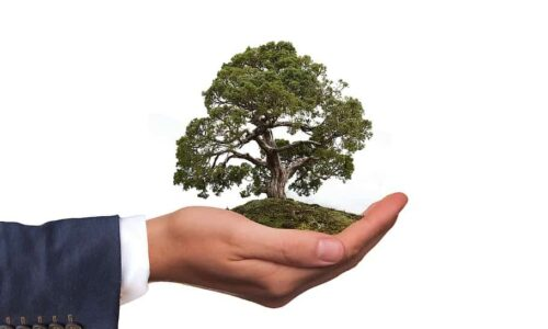 Going green is a must for businesses