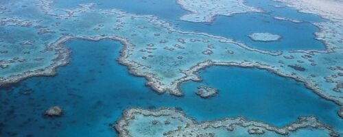 Australia 'must do more' to protect the Great Barrier Reef
