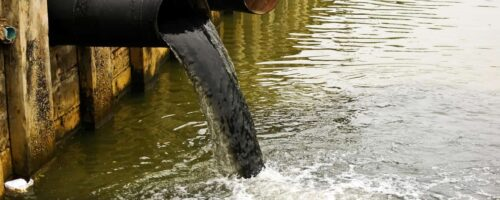 Water companies are major sources of microplastics in the UK's rivers