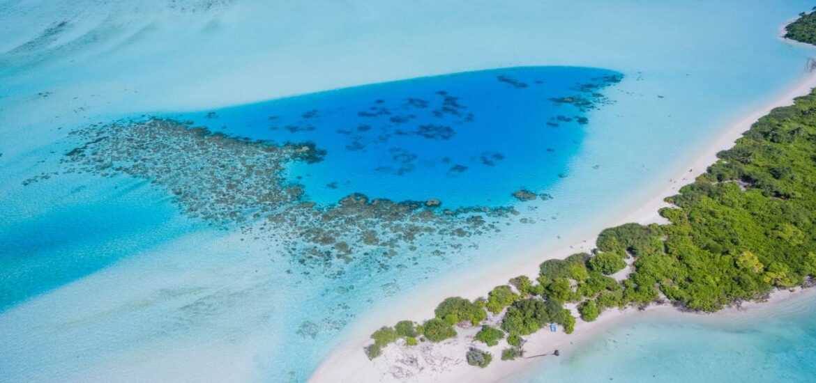 The US's coral reefs save billions of dollars in flood damage